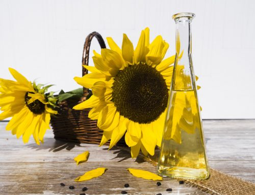Top 7 Reasons Why Sunflower Oil Is One of the Most Popular Ingredients